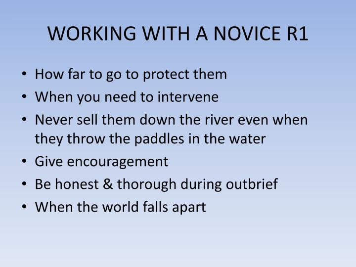 WORKING WITH A NOVICE R1