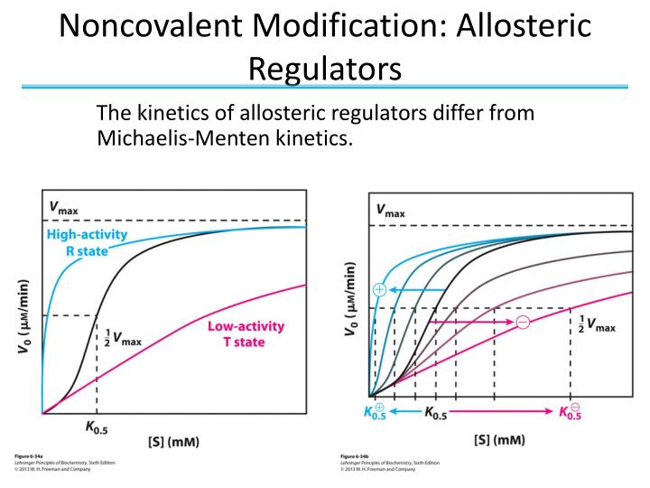 Noncovalent Modification: Allosteric Regulators