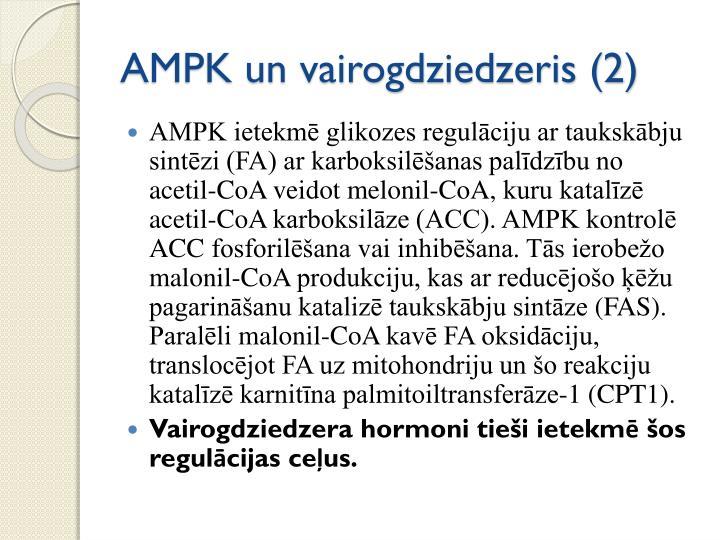 AMPK un vairogdziedzeris (2)