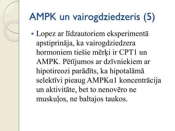 AMPK un vairogdziedzeris (5)