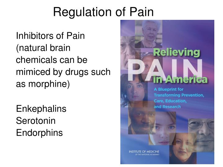 Regulation of Pain