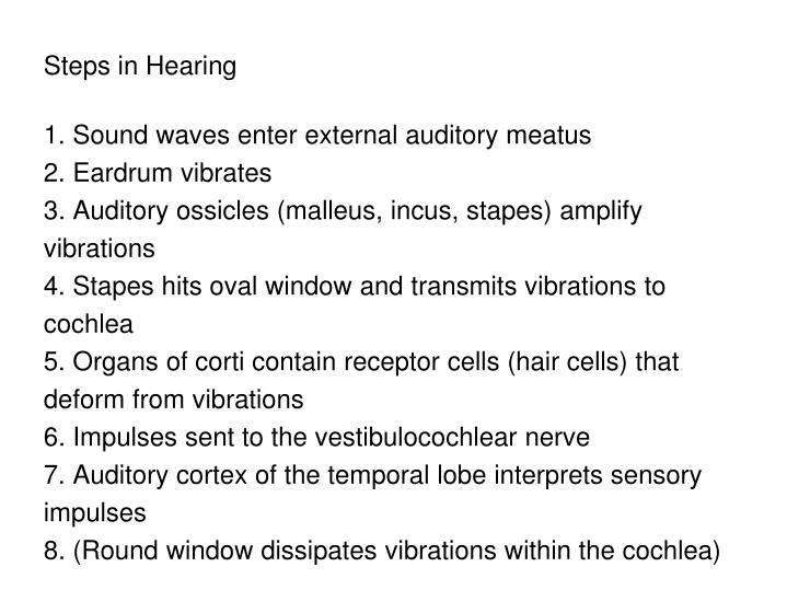 Steps in Hearing