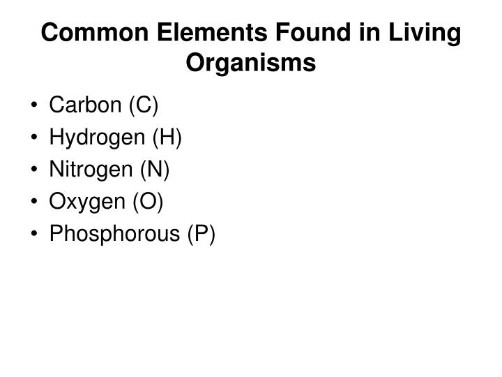 Common Elements Found in Living Organisms