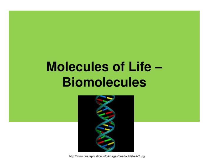 Molecules of life biomolecules