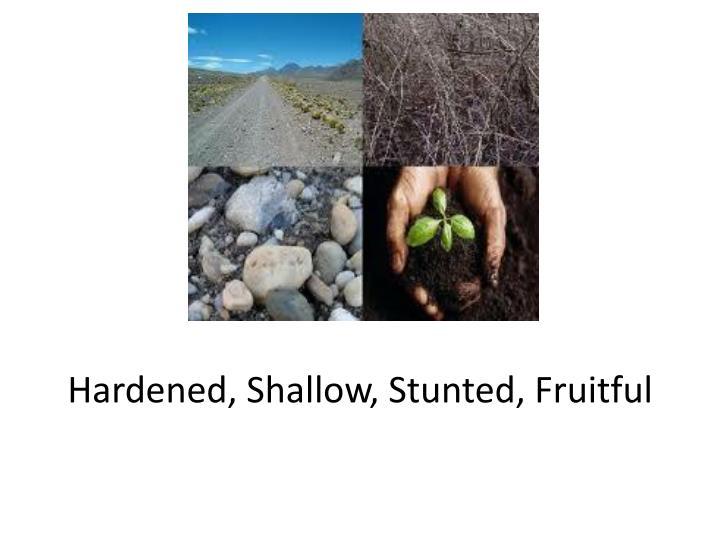 Hardened, Shallow, Stunted, Fruitful
