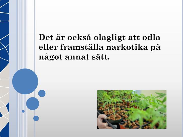 Det är också olagligt att odla eller framställa narkotika på något annat sätt.