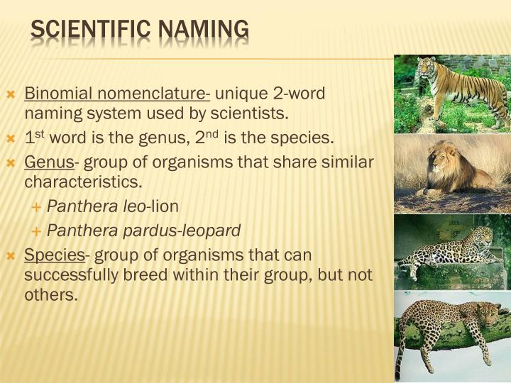 Scientific Naming