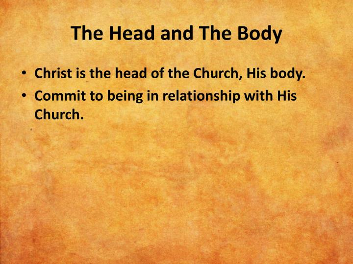 The Head and The Body