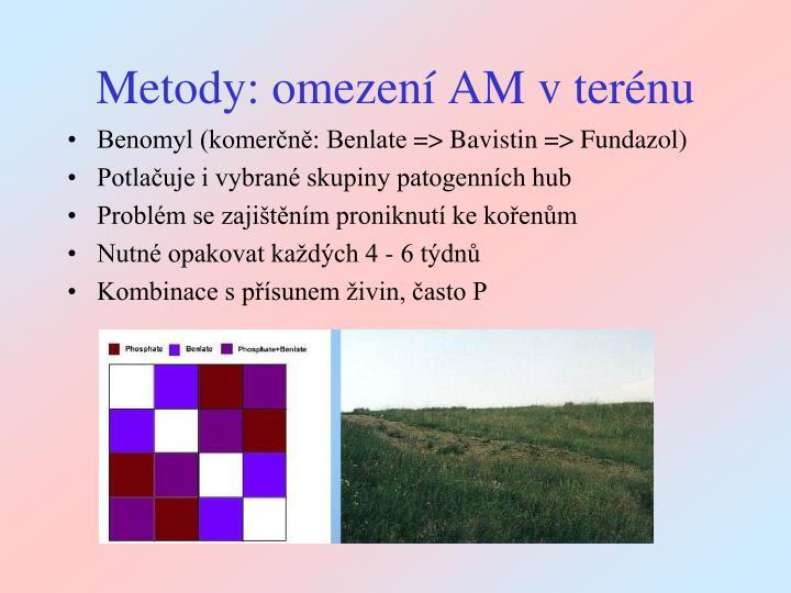 Metody: omezení AM v terénu