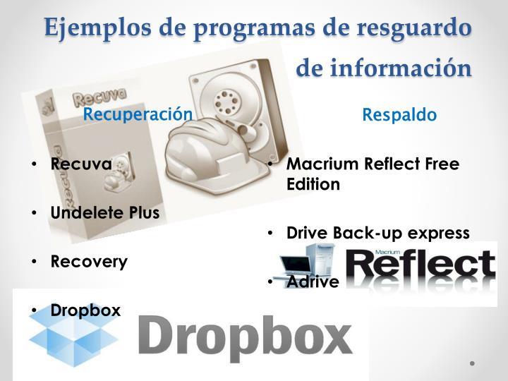 Ejemplos de programas de resguardo de información