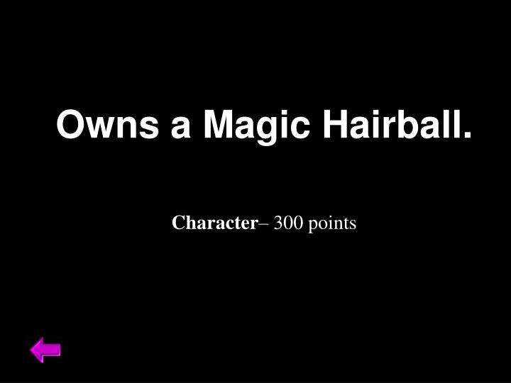 Owns a Magic Hairball.