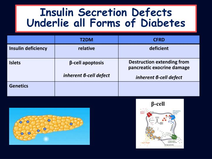 Insulin Secretion Defects Underlie all Forms of Diabetes
