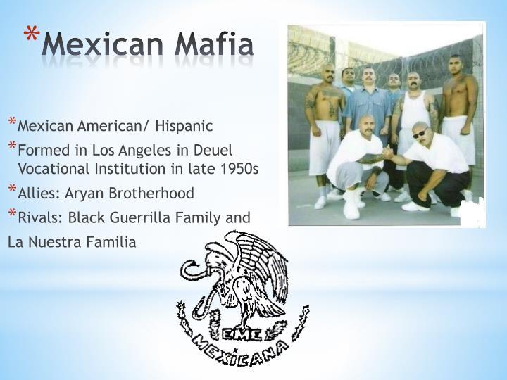 Mexican American/ Hispanic