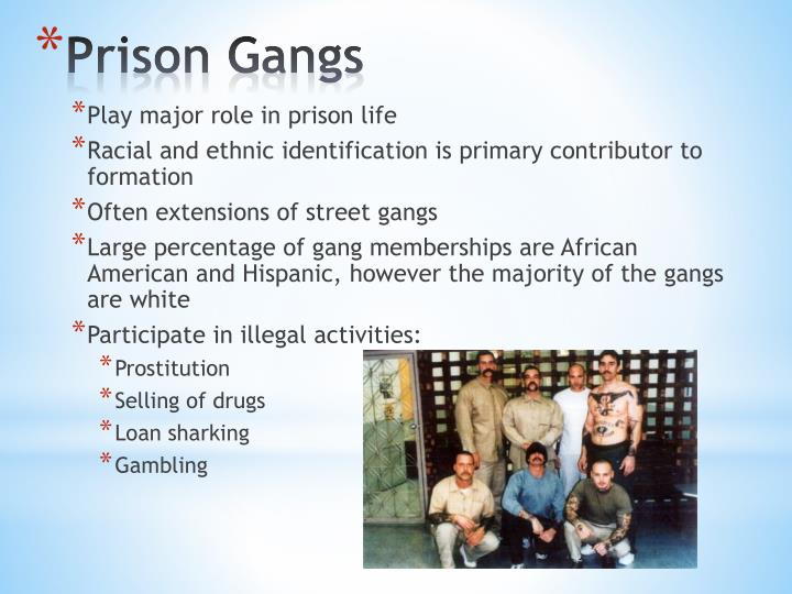 Play major role in prison life