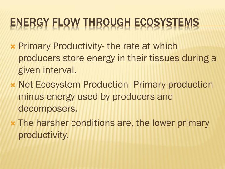Primary Productivity- the rate at which producers store energy in their tissues during a given interval.