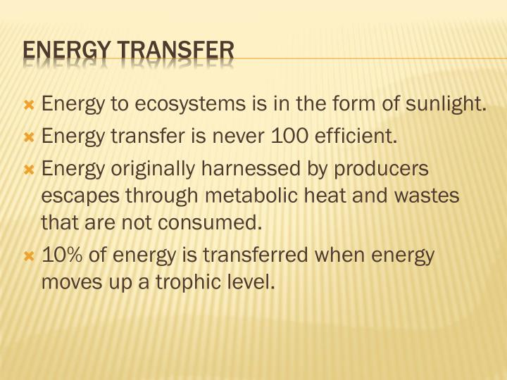 Energy to ecosystems is in the form of sunlight.