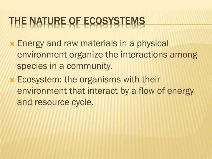 The nature of ecosystems
