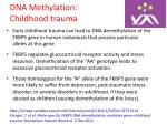dna methylation childhood trauma