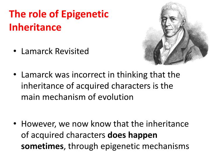 the role of epigenetic inheritance