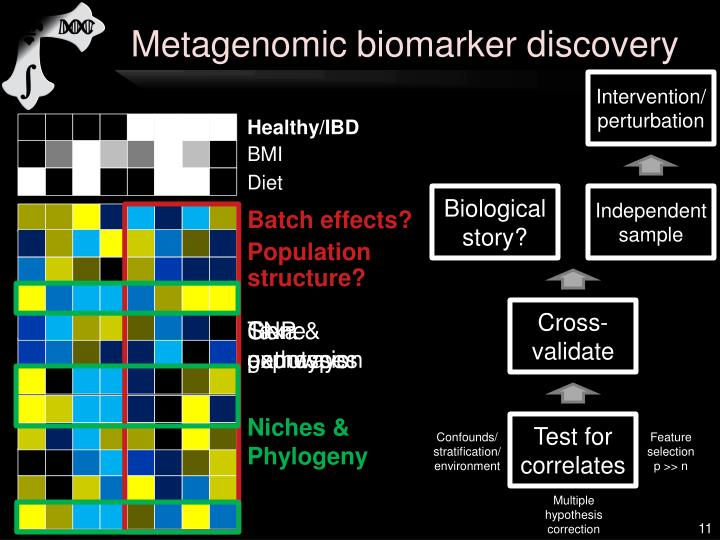 Ppt Computational Metagenomics And The Human Microbiome