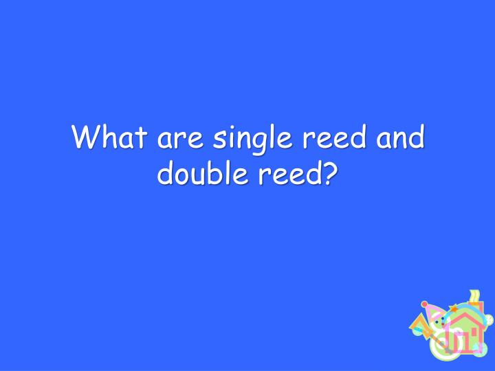 What are single reed and double reed?