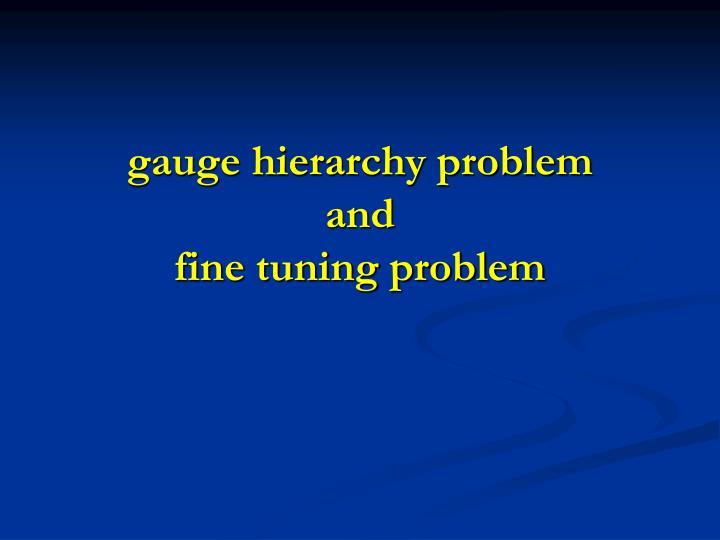 gauge hierarchy problem