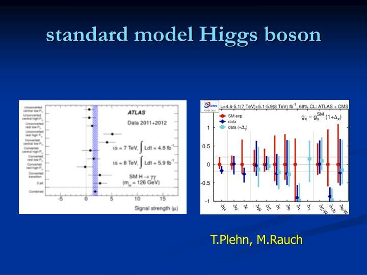 standard model Higgs boson