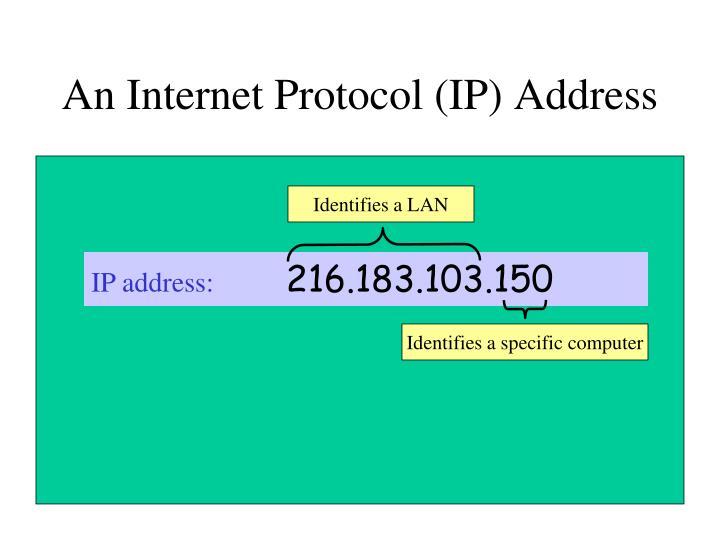 An Internet Protocol (IP) Address
