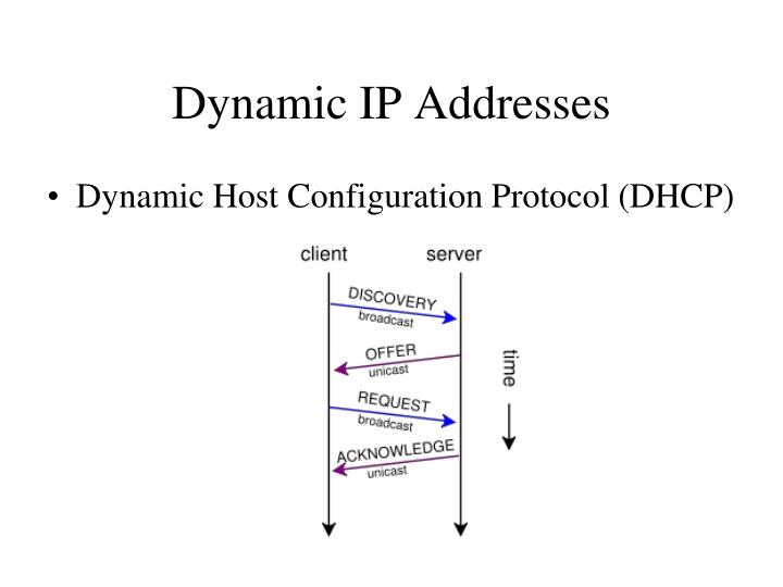 Dynamic IP Addresses