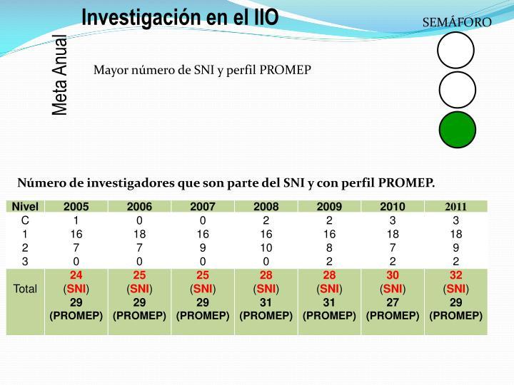 Investigación en el IIO