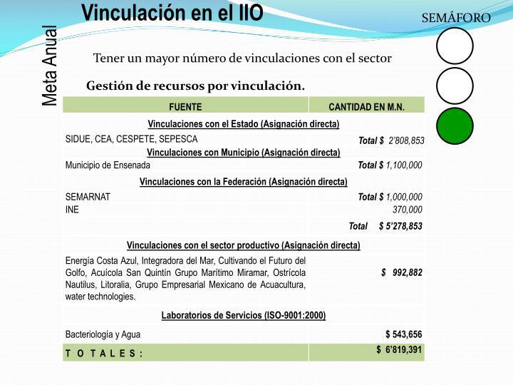 Vinculación en el IIO
