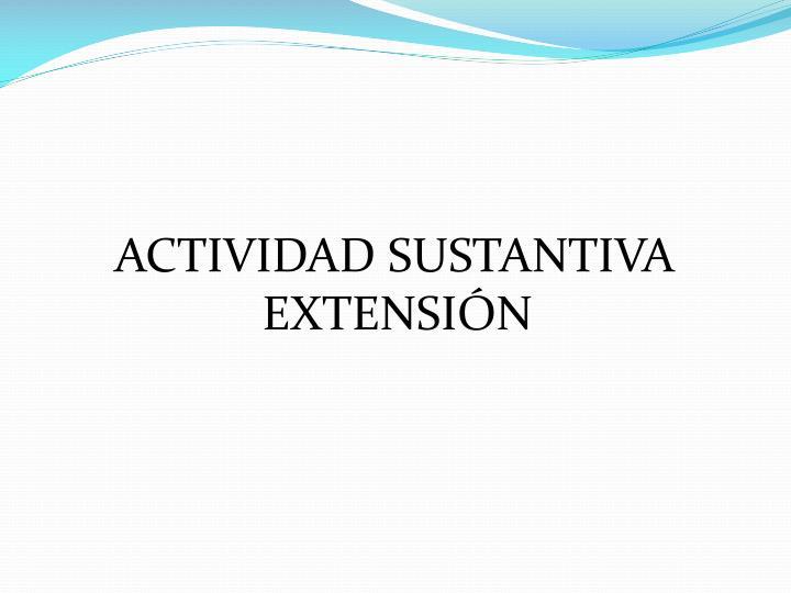 Actividad sustantiva