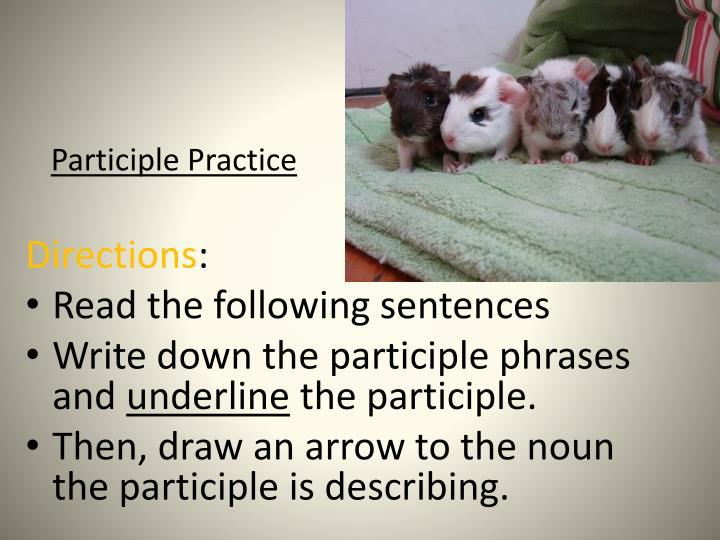 Participle Practice
