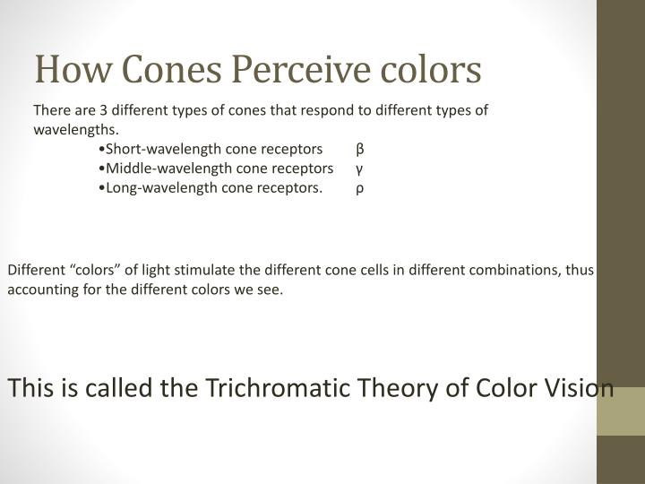 How Cones Perceive colors