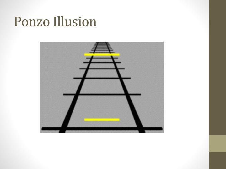 Ponzo