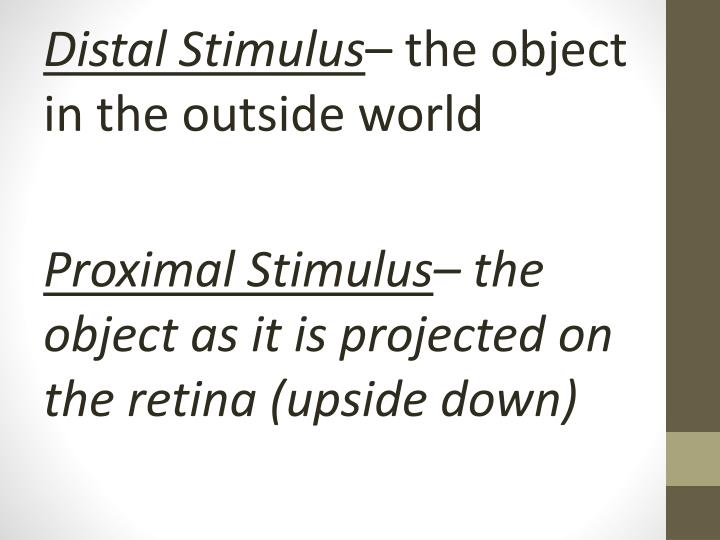 Distal Stimulus