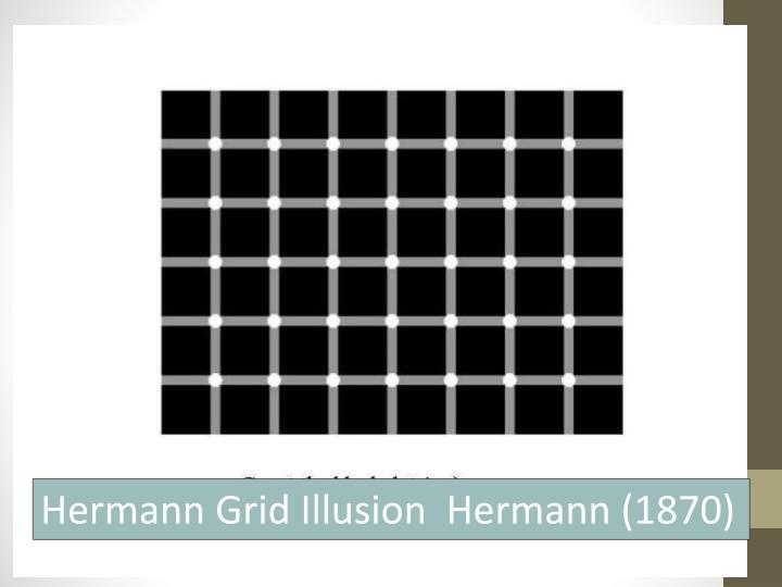 Hermann Grid Illusion  Hermann (1870)