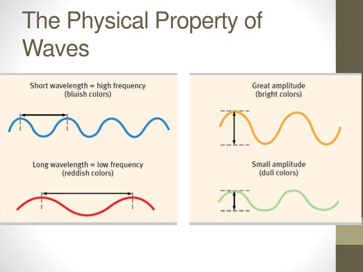 The Physical Property of Waves