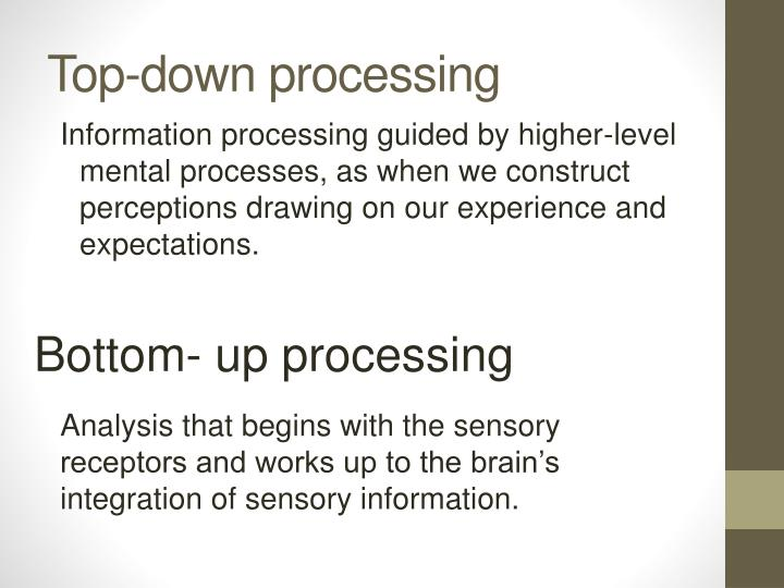 Top-down processing