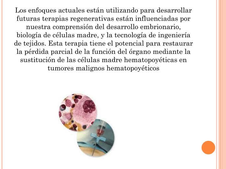 Los enfoques actuales están utilizando para desarrollar futuras terapias regenerativas están influenciadas por nuestra comprensión del desarrollo embrionario, biología de células madre, y la tecnología de