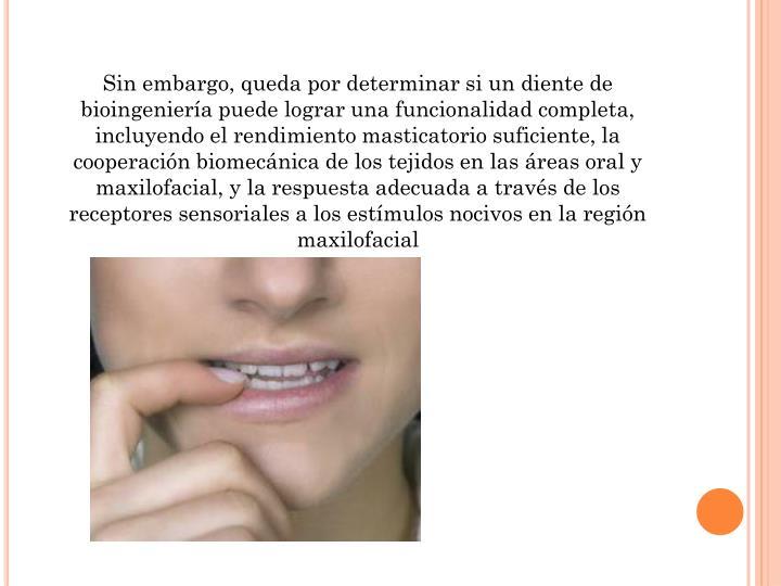 Sin embargo, queda por determinar si un diente de bioingeniería puede lograr una funcionalidad completa, incluyendo el rendimiento masticatorio suficiente, la cooperación biomecánica de los tejidos en las áreas oral y maxilofacial, y la respuesta adecuada a través de los receptores sensoriales a los estímulos nocivos en la región maxilofacial