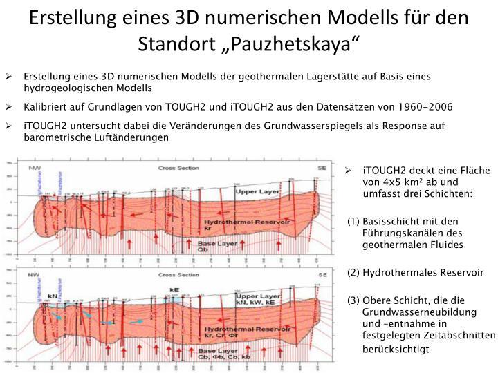 """Erstellung eines 3D numerischen Modells für den Standort """"Pauzhetskaya"""""""