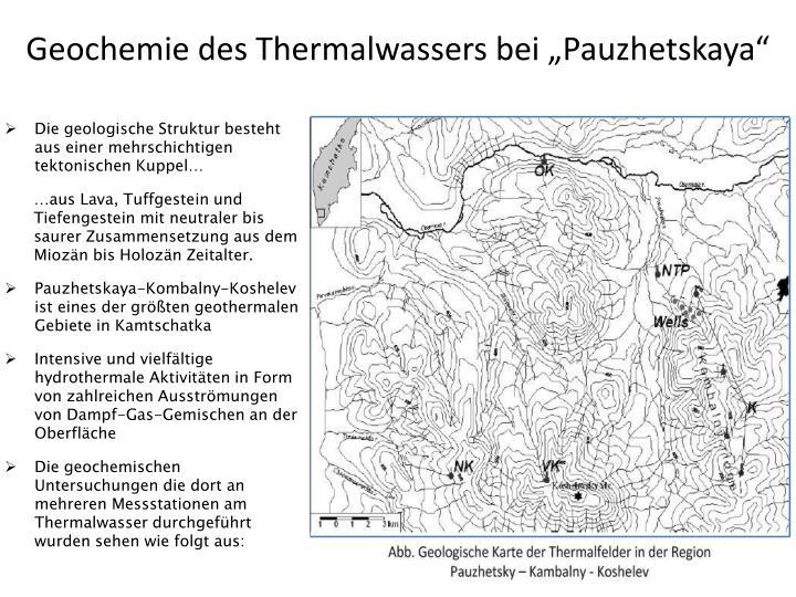 "Geochemie des Thermalwassers bei ""Pauzhetskaya"""