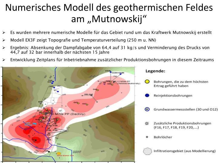 """Numerisches Modell des geothermischen Feldes am """"Mutnowskij"""""""