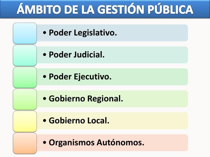 ÁMBITO DE LA GESTIÓN PÚBLICA