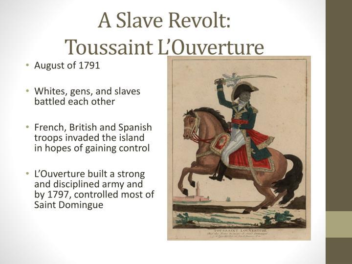 A Slave Revolt: