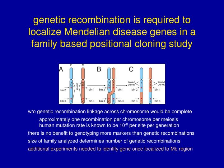 genetic recombination is required to