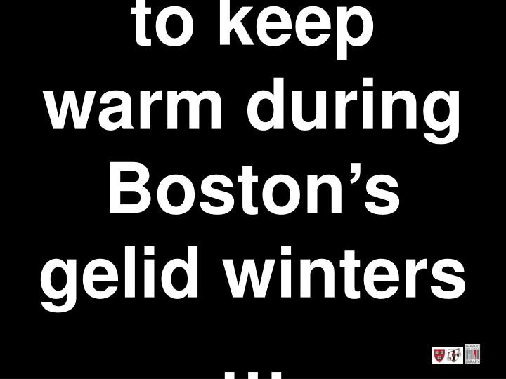 to keep warm during Boston's gelid winters …