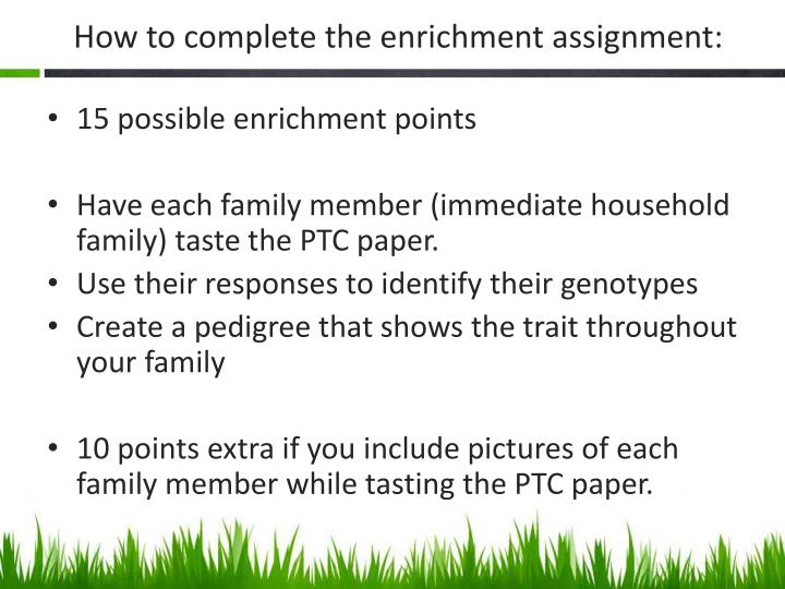 How to complete the enrichment assignment: