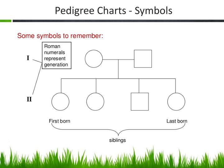 Pedigree Charts - Symbols